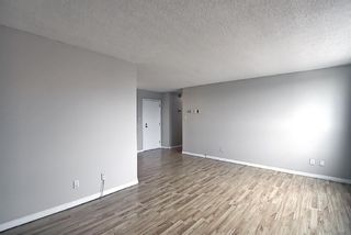 Photo 11: 508 314 14 Street NW in Calgary: Hillhurst Apartment for sale : MLS®# A1117580