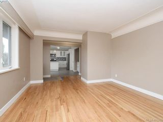 Photo 8: 3590 Shelbourne St in VICTORIA: SE Cedar Hill House for sale (Saanich East)  : MLS®# 805260