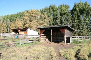 Photo 11: RR 220 And HWY 18: Rural Thorhild County House for sale : MLS®# E4227750