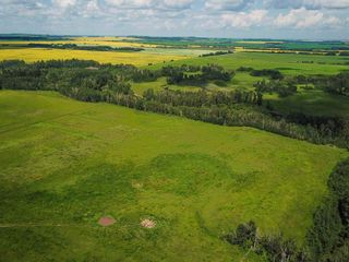 Photo 7: 2536 TWP 493: Rural Leduc County House for sale : MLS®# E4233247