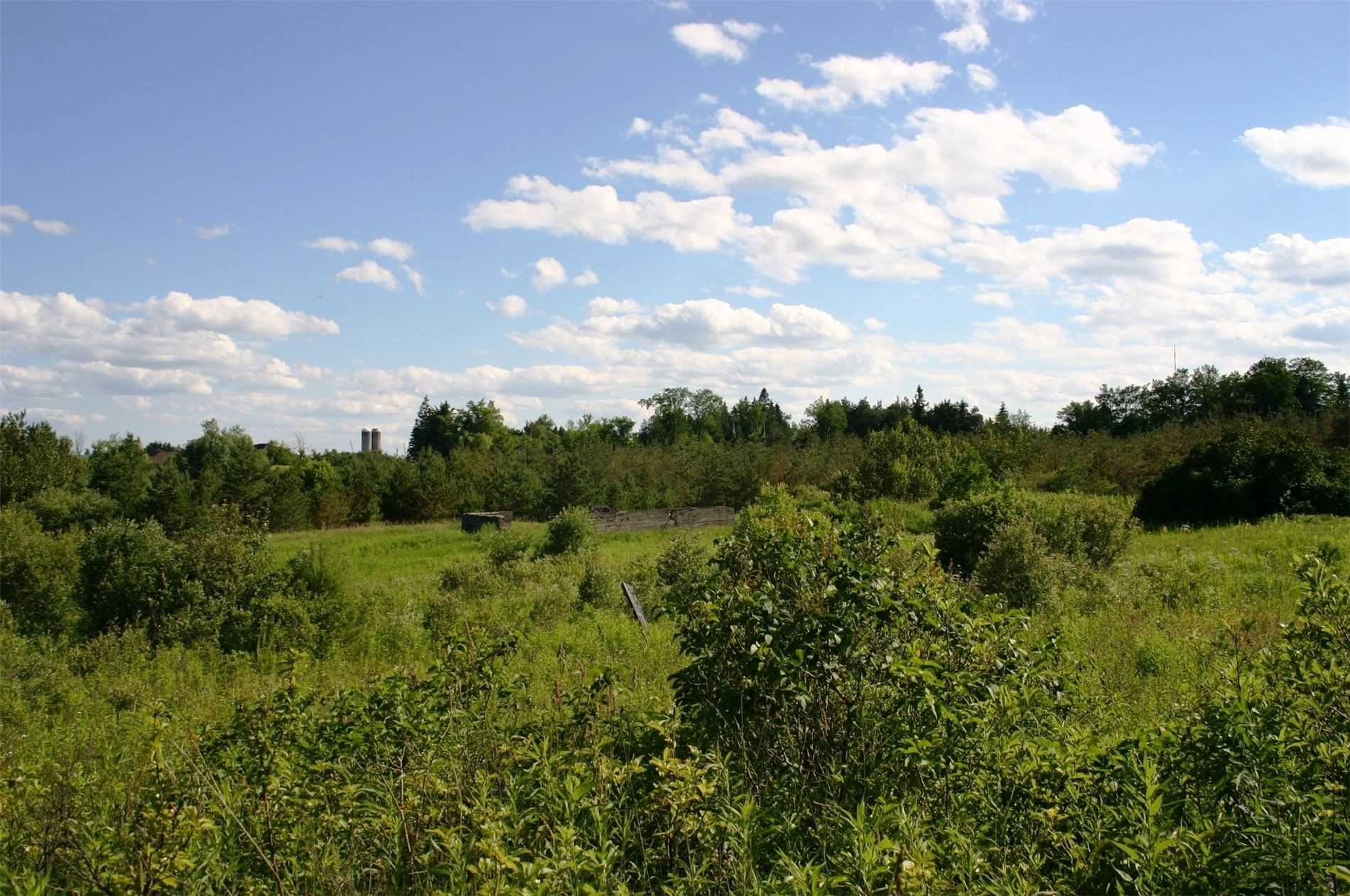 Main Photo: 475547 County Road 11 in Amaranth: Rural Amaranth Property for sale : MLS®# X4667613