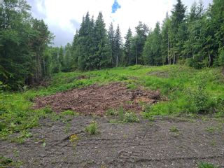 Photo 23: 1395 Taylor Road, in Sorrento: Vacant Land for sale : MLS®# 10229703