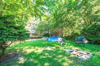 Photo 8: 146 Third Avenue: Shelburne House (Bungalow) for sale : MLS®# X4932432
