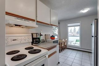 Photo 10: 301 2722 17 Avenue SW in Calgary: Shaganappi Apartment for sale : MLS®# A1098197