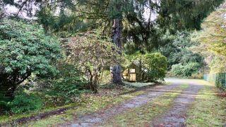 Photo 11: 11847 267 Street in Maple Ridge: Northeast House for sale : MLS®# R2322069