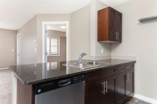 Photo 20: 306 5810 MULLEN Place in Edmonton: Zone 14 Condo for sale : MLS®# E4241982