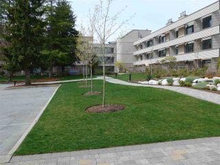 """Photo 2: 208 15313 19 Avenue in Surrey: King George Corridor Condo for sale in """"Village Terrece"""" (South Surrey White Rock)  : MLS®# R2258565"""