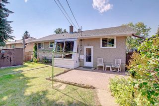 Photo 31: 2618 46 Street SE in Calgary: Forest Lawn Detached for sale : MLS®# A1146875