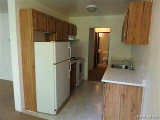Photo 5: 101 1060 Linden Ave in VICTORIA: Vi Rockland Condo for sale (Victoria)  : MLS®# 707407