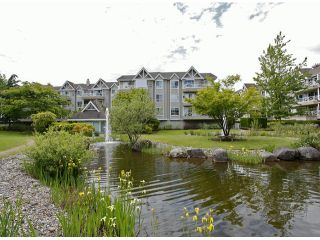 """Photo 24: 205 5556 201A Street in Langley: Langley City Condo for sale in """"Michaud Gardens"""" : MLS®# F1321121"""