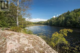Photo 49: 399 HEALEY LAKE Road in MacTier: House for sale : MLS®# 40163911
