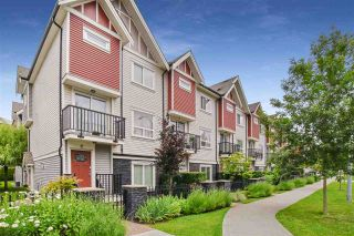 """Photo 1: 5 14177 103 Avenue in Surrey: Whalley Townhouse for sale in """"The Maple"""" (North Surrey)  : MLS®# R2470471"""