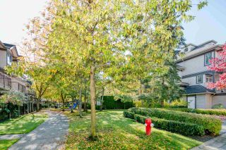 """Photo 19: 14 6300 ALDER Street in Richmond: McLennan North Townhouse for sale in """"The HAMPTONS by Cressey"""" : MLS®# R2217953"""