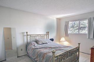 Photo 7: 47 Falworth Place NE in Calgary: Falconridge Detached for sale : MLS®# A1139441