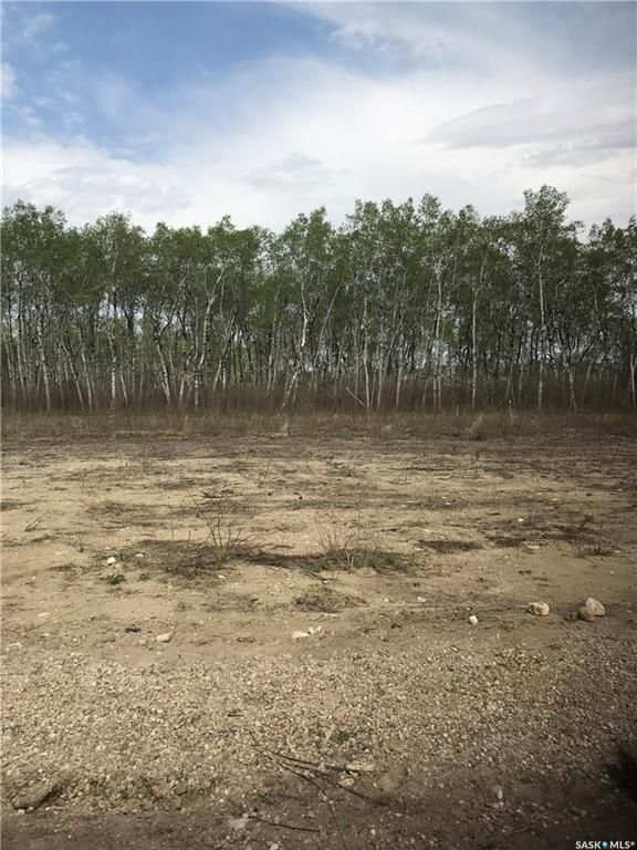 Main Photo: 230 7th Avenue Northeast in Preeceville: Lot/Land for sale : MLS®# SK850978