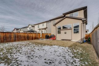 Photo 35: 211 Brightonstone Gardens SE in Calgary: New Brighton Detached for sale : MLS®# A1052995