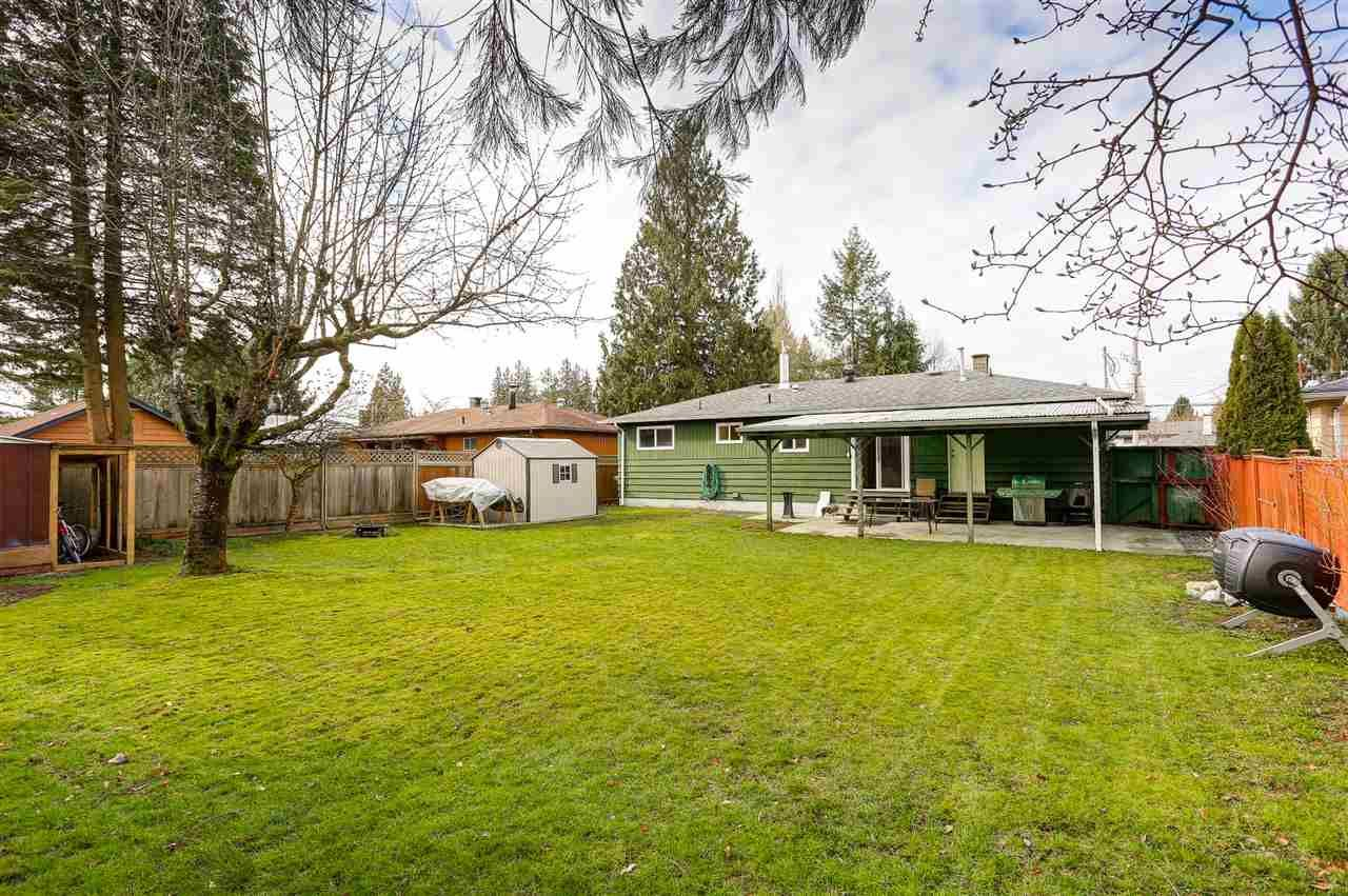 Main Photo: 11632 STEEVES STREET in Maple Ridge: Southwest Maple Ridge House for sale : MLS®# R2038534