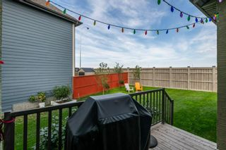 Photo 36: 204 Masters Crescent SE in Calgary: Mahogany Detached for sale : MLS®# A1143615