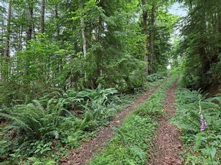 Photo 64: Lot 2 Eagles Dr in : CV Courtenay North Land for sale (Comox Valley)  : MLS®# 869395