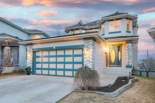 Main Photo: 238 Chaparral Court SE in Calgary: Chaparral Detached for sale : MLS®# A1096011