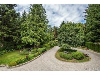 Photo 16: 8381 Lochside Dr in SAANICHTON: CS Turgoose House for sale (Central Saanich)  : MLS®# 733572