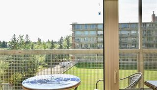 Photo 16: 505 3204 RIDEAU Place SW in Calgary: Rideau Park Apartment for sale : MLS®# C4263774