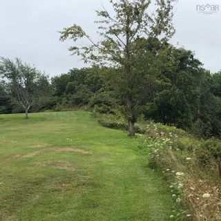 Photo 3: Lot 101 Highway in Plympton: 401-Digby County Vacant Land for sale (Annapolis Valley)  : MLS®# 202120343