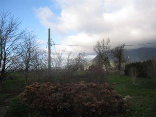 Photo 8: 38806 NICOMEN ISLAND TRUNK Road in Mission: Dewdney Deroche House for sale : MLS®# R2422265