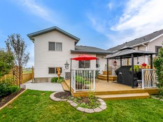 Photo 28: 101 Appleside Close SE in Calgary: Applewood Park Detached for sale : MLS®# A1128476