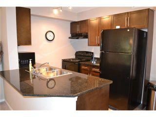 Photo 5: #113 7110 80 AV NE in Calgary: Saddle Ridge Condo for sale : MLS®# C4051517