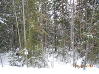 Photo 8: 84 Anglemont Way in Anglemont: North Shuswap Land Only for sale (Shuswap)  : MLS®# 10058557