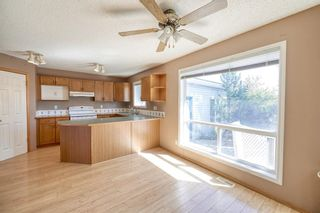 Photo 13: 172 ERIN MEADOW Way SE in Calgary: Erin Woods Detached for sale : MLS®# A1028932