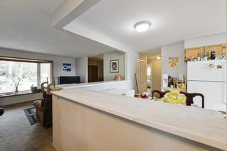 Photo 9: 91 Mardale Crescent NE in Calgary: Marlborough Detached for sale : MLS®# A1107782