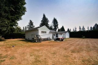 Photo 6: 4689 238 Street in Langley: Salmon River House for sale : MLS®# R2327028