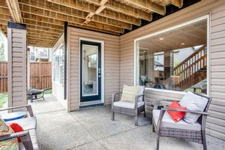 Photo 37: 56 BRIGHTONWOODS Grove SE in Calgary: New Brighton Detached for sale : MLS®# A1026524
