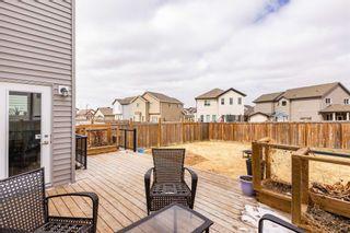 Photo 37: 6120 18 Avenue in Edmonton: Zone 53 House for sale : MLS®# E4254367