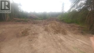 Photo 9: 3820 GOLDMAN ROAD in Quesnel: Vacant Land for sale : MLS®# R2612418