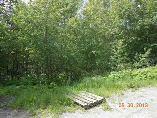 Photo 3: 247 Aspen Road in Anglemont: Land Only for sale : MLS®# 10066280
