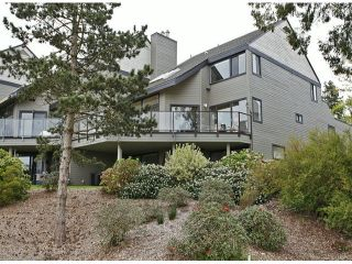 Photo 18: 3615 NICO WYND Drive in Surrey: Elgin Chantrell Home for sale ()  : MLS®# F1419011