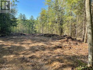 Photo 20: 1372 LAKE LORRAINE Road in Tory Hill: Vacant Land for sale : MLS®# 40052884