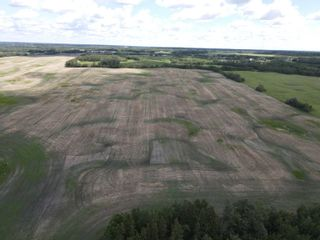 Photo 4: 51478 Rg Rd 231: Rural Strathcona County Rural Land/Vacant Lot for sale : MLS®# E4263127