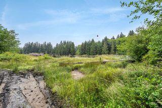 Photo 36: 16706 Parkinson Rd in Port Renfrew: Sk Port Renfrew Land for sale (Sooke)  : MLS®# 882036