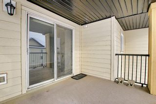 Photo 27: 7402 304 MacKenzie Way SW: Airdrie Apartment for sale : MLS®# A1081028