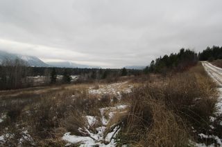 Photo 2: 37 2481 Squilax Anglemont Road in Lee Creek: North Shuswap Land Only for sale (Shuswap)
