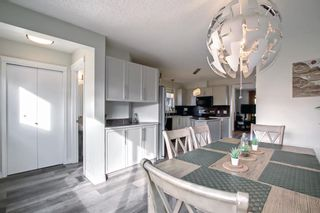 Photo 14: 149 Prestwick Heights SE in Calgary: McKenzie Towne Detached for sale : MLS®# A1151764