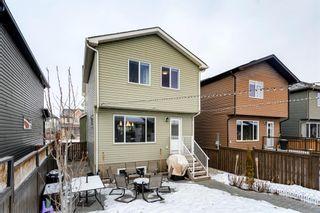 Photo 33: 73 AUTUMN Terrace SE in Calgary: Auburn Bay Detached for sale : MLS®# A1063078
