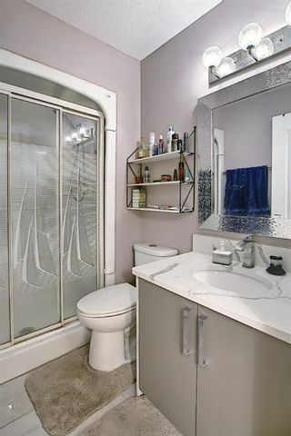 Photo 23: 6511 24 Avenue NE in Calgary: Pineridge Detached for sale : MLS®# A1152283