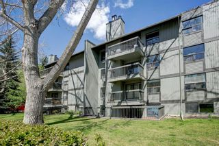 Photo 28: 204 626 24 Avenue SW in Calgary: Cliff Bungalow Apartment for sale : MLS®# A1106884
