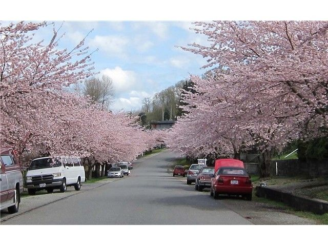 Photo 20: Photos: 7040 MALIBU DR in Burnaby: Westridge BN House for sale (Burnaby North)  : MLS®# V1104735