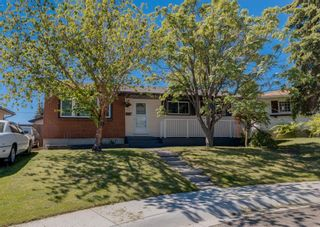 Photo 18: 31 Penworth Place SE in Calgary: Penbrooke Meadows Detached for sale : MLS®# A1120647